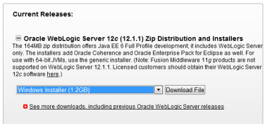 Installing Oracle Weblogic Server (OWLS) 12c 12 1 1 on